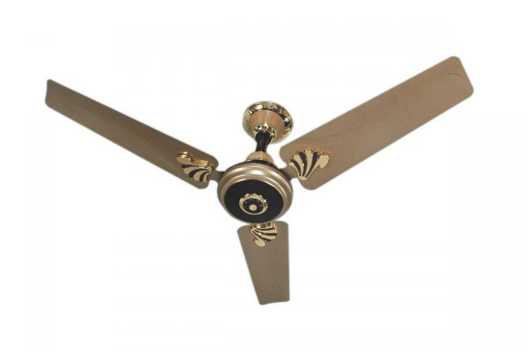 ceiling fans -ortem